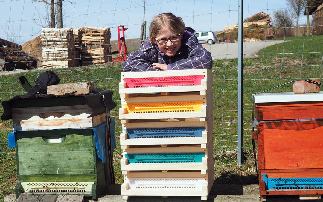 Neue Bienenvölker braucht das Land